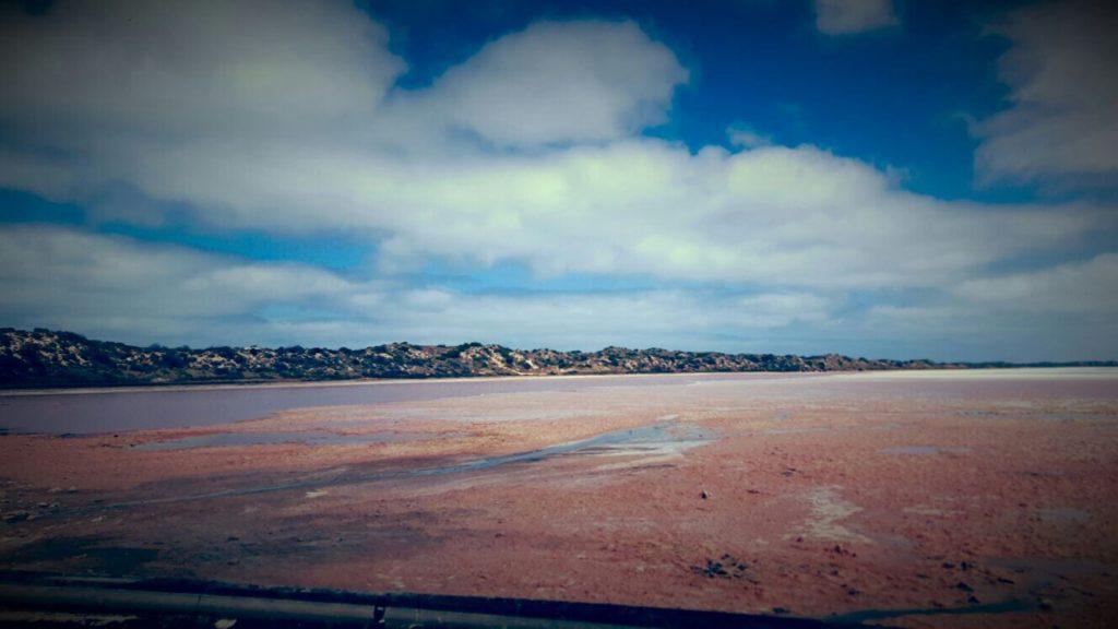 Pink Lake Westküste Australien