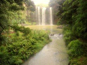 Wasserfall Whangarei
