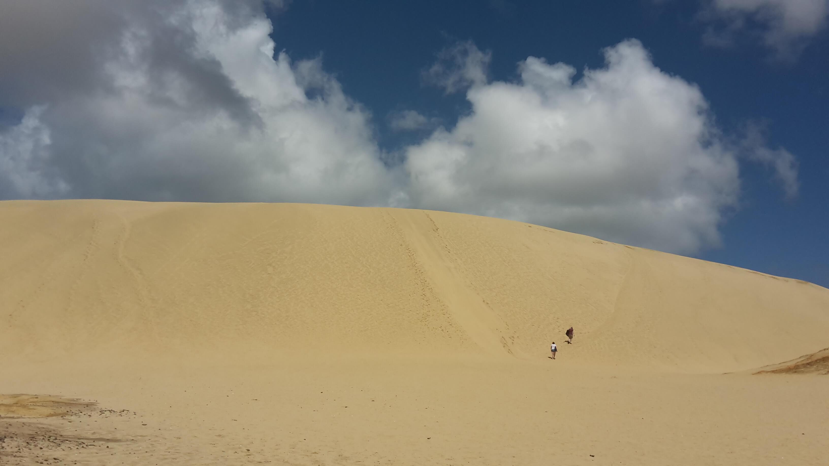 Sandboarding Neuseeland Lancellin