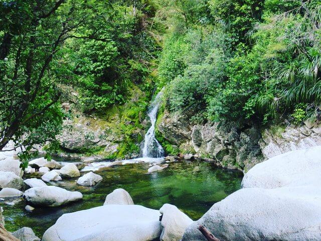 Die Wainui Falls in Neuseeland