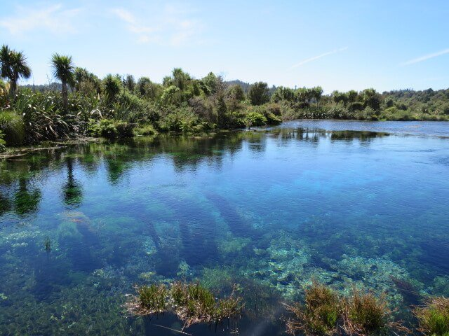 Te Waikoropupu Springs Neuseeland/ Südinsel