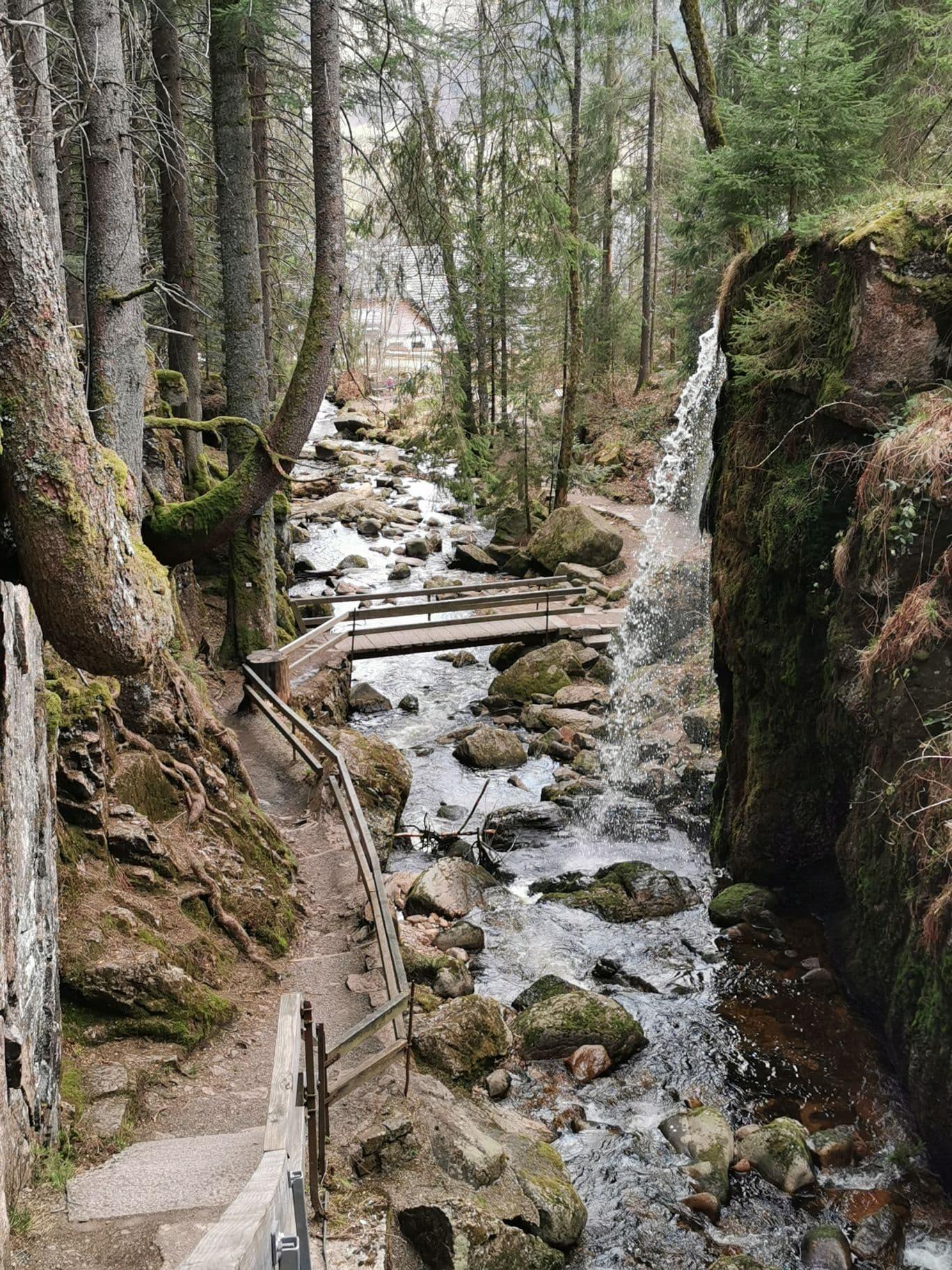 Wasserfälle Menzenschwand Geißenpfad