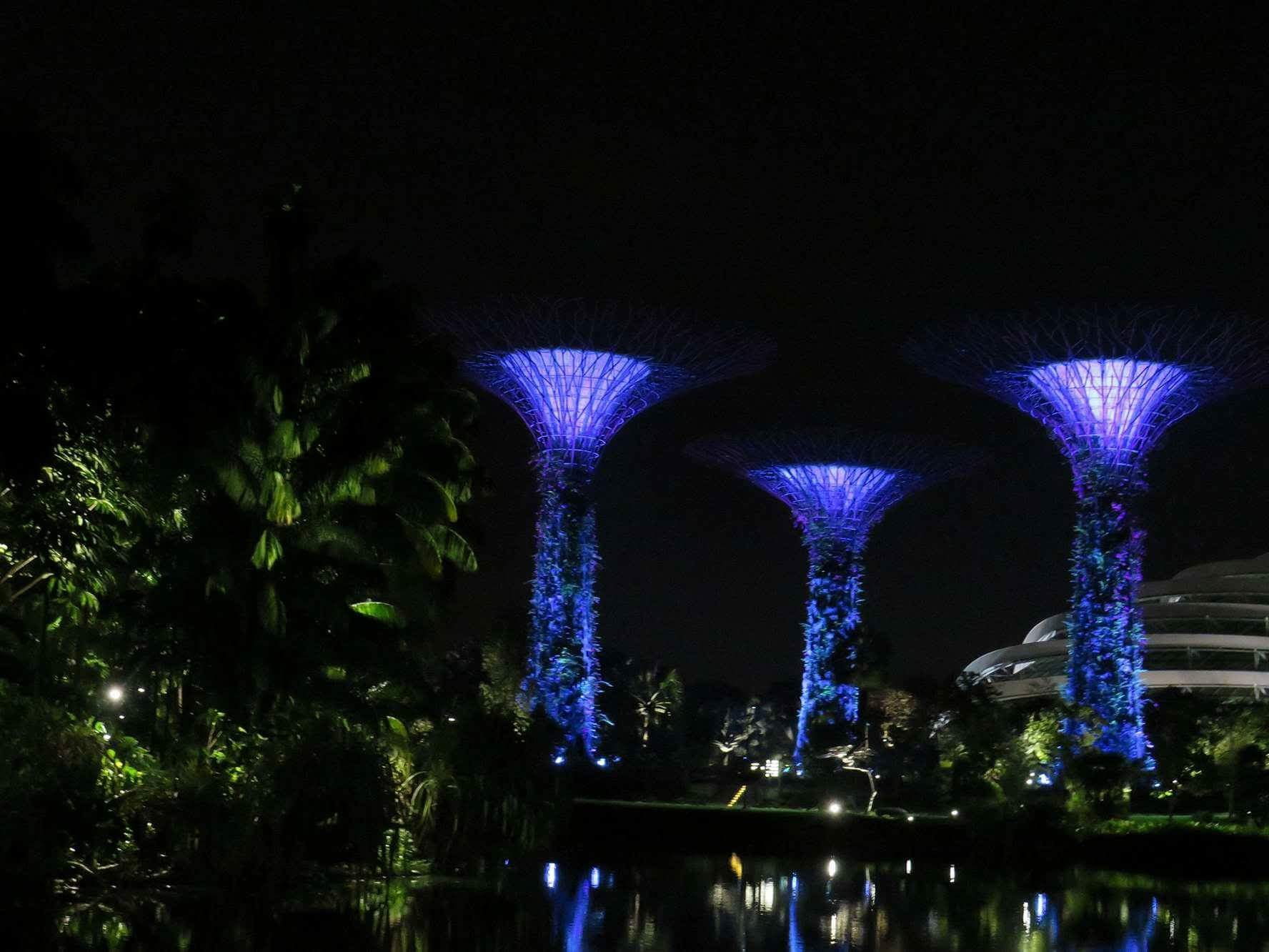 Magic Trees Gardens by the Bay
