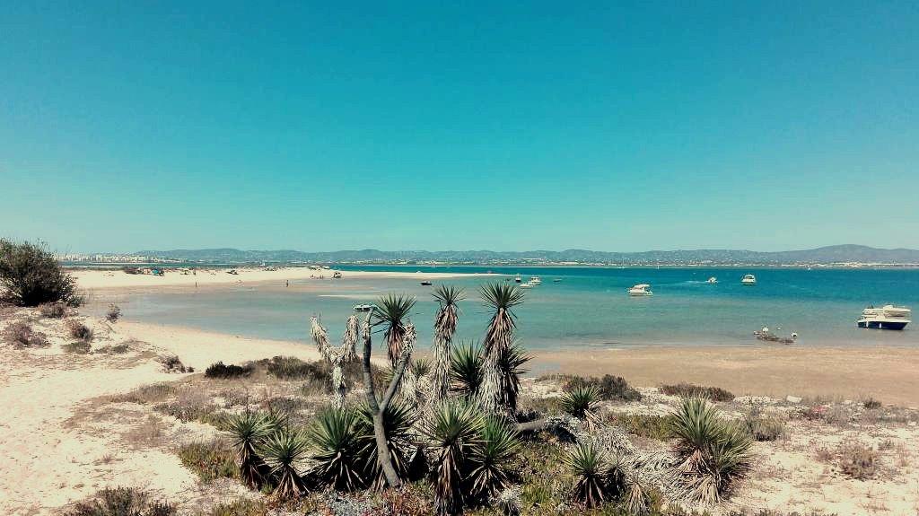 Ilha Deserta Faro Portugal