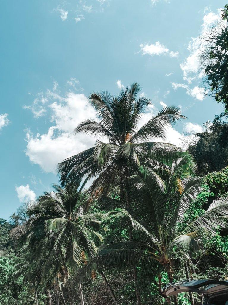Pazifik Costa Rica