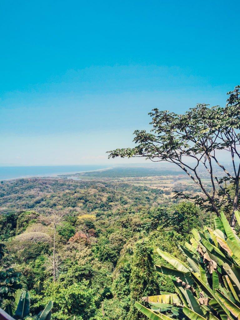 Tiko Restaurant Costa Rica Reise